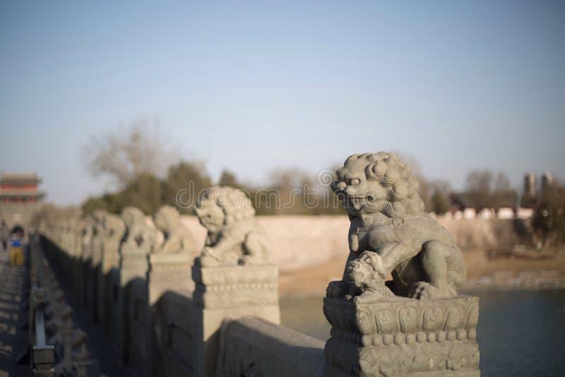 在芦沟桥的石狮子在丰台区,北京市 库存照片