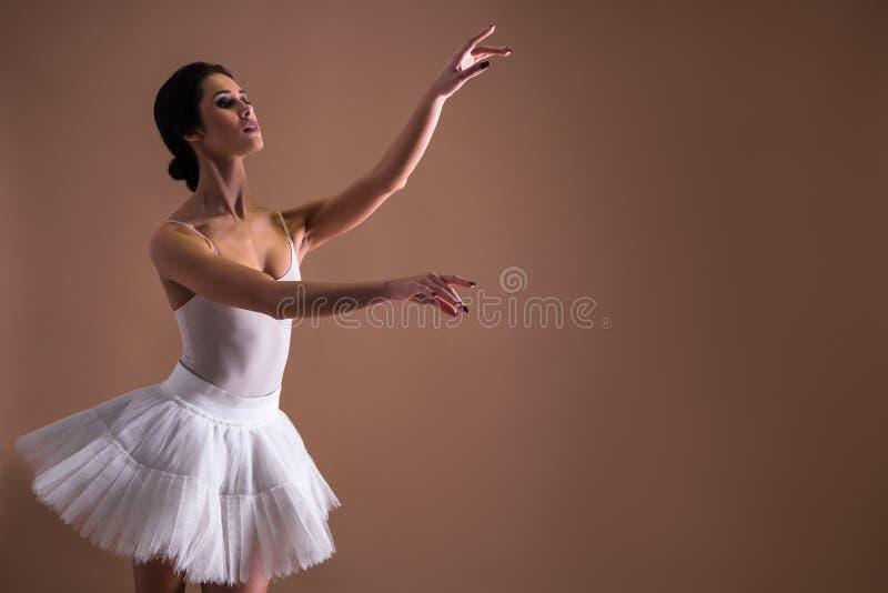 在芭蕾舞短裙的年轻美好的妇女芭蕾舞女演员跳舞 库存图片