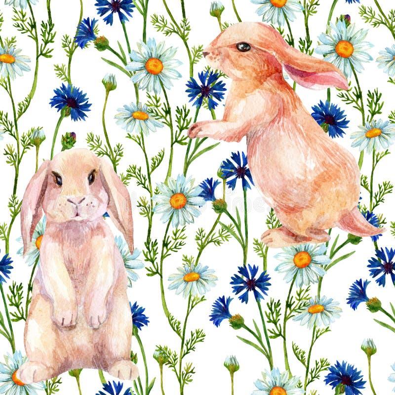 在花中的兔子 水彩无缝的样式 库存例证