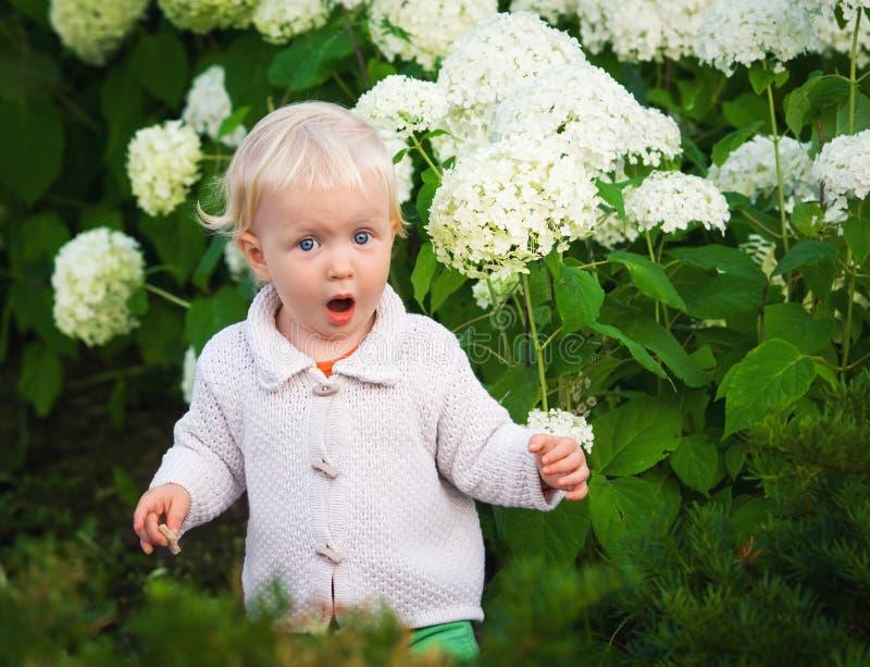 在花中的惊奇的孩子 免版税库存图片