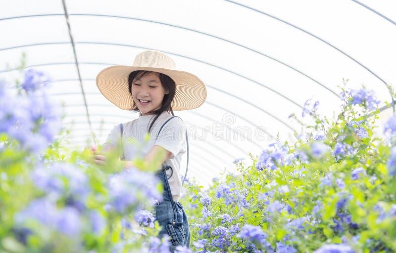 在花中的愉快的亚裔女孩在庭院,海角Leadwor里 图库摄影