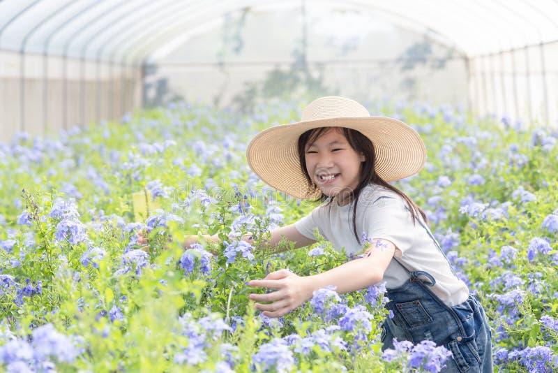 在花中的愉快的亚裔女孩在庭院,海角Leadwor里 免版税库存照片