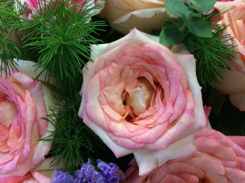在花卉婚礼装饰的混杂的桃红色玫瑰 免版税库存照片