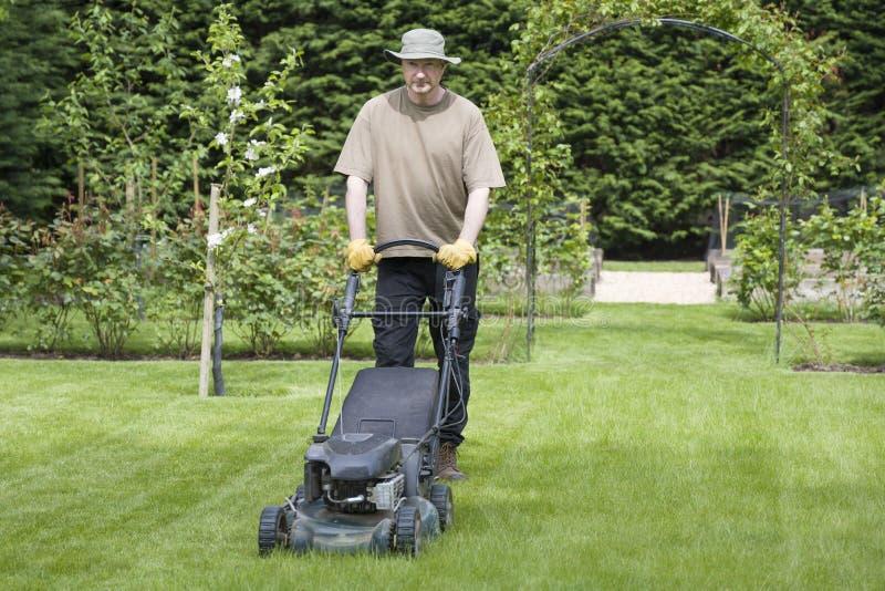 在花园割草,草坪护理和维护,英国 免版税库存照片