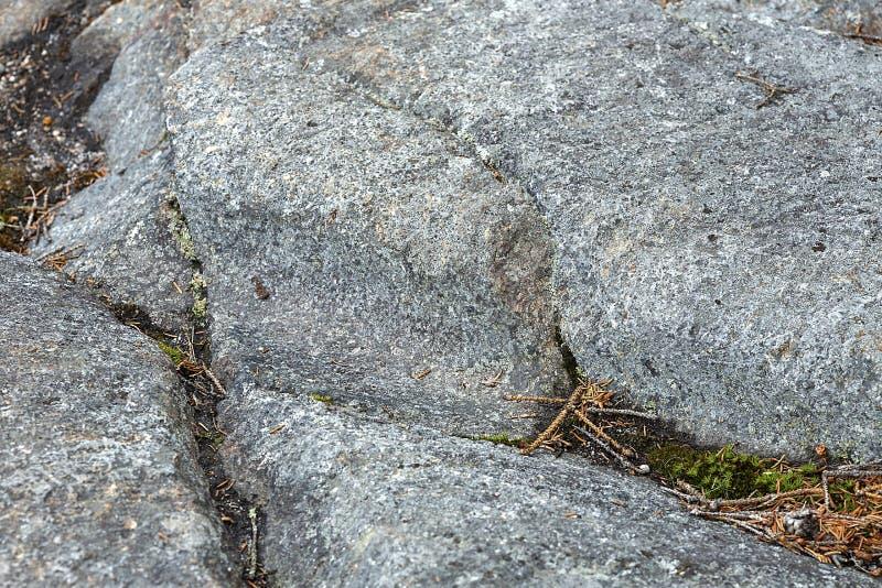 在花岗岩根底的冰河凹线在Mt Kearsarge,新的Hampshi 库存图片