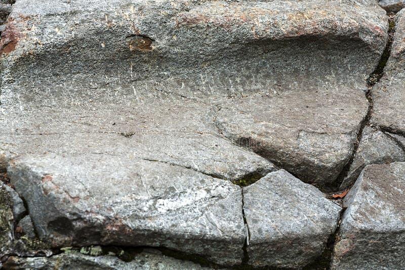 在花岗岩根底的冰河凹线在Mt Kearsarge,新的Hampshi 免版税库存图片