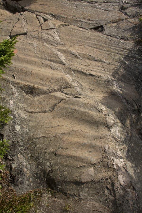 在花岗岩根底, Mt的冰河凹线 Kearsarge,新罕布什尔, 库存图片