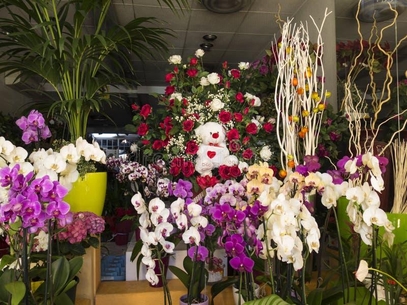 在花店的五颜六色的显示 免版税库存照片