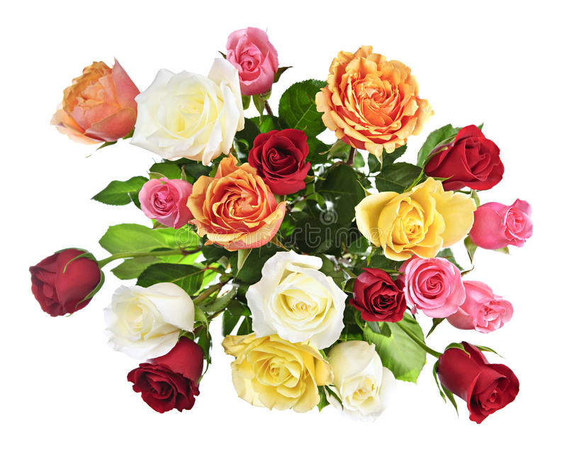 在花束玫瑰之上 库存照片