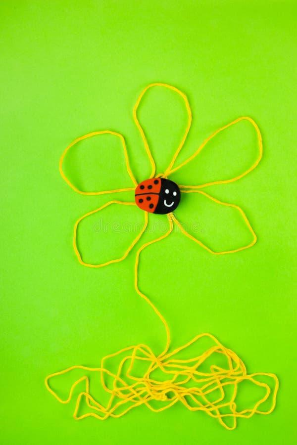 在花演播室射击的瓢虫 库存图片