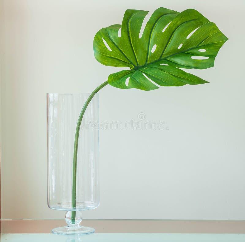 在花瓶的叶子 库存图片