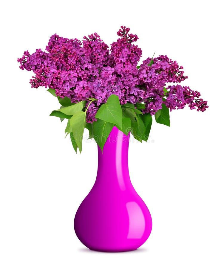 在花瓶的开花的淡紫色花 库存照片