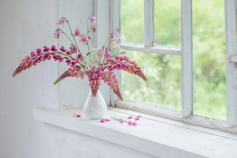 在花瓶的桃红色夏天花在白色窗台 库存照片