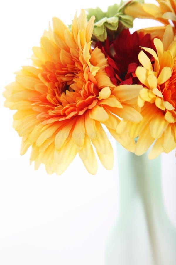 在花瓶的橙色大丽花 库存照片