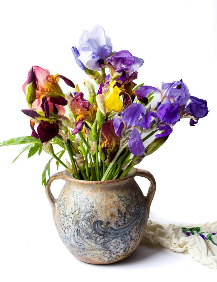 在花瓶的混杂的虹膜花 免版税库存照片