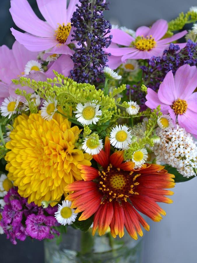 在花瓶的美丽的野花花束 库存图片