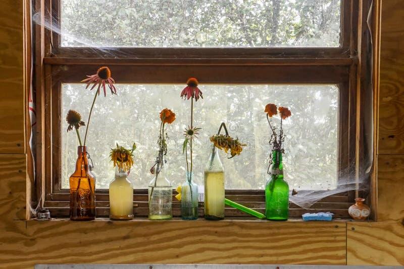 在花瓶的花在架子 免版税图库摄影