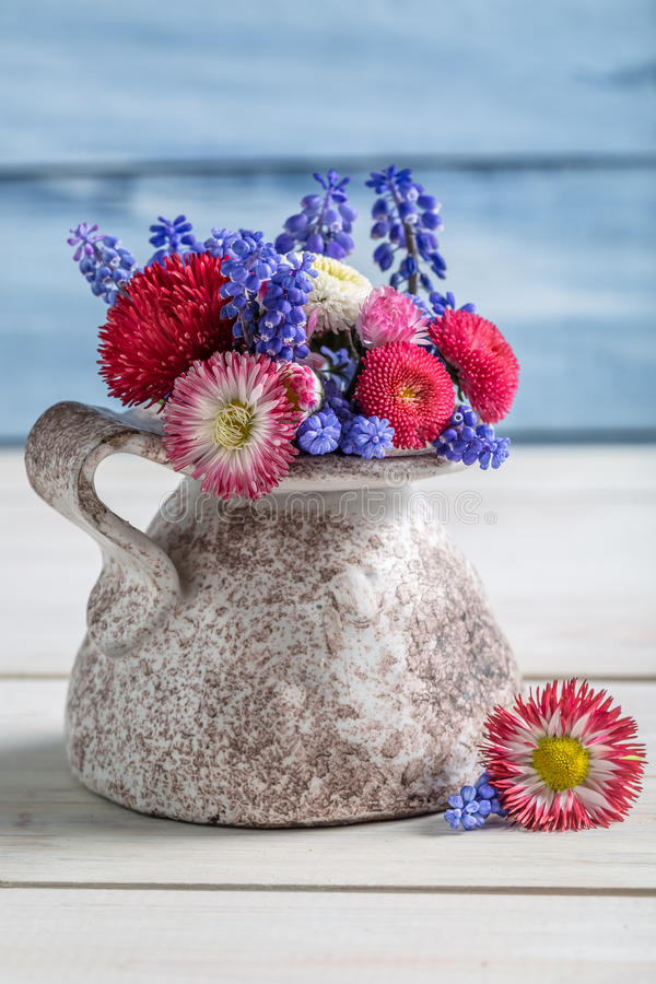 在花瓶的蓝色春天花 图库摄影