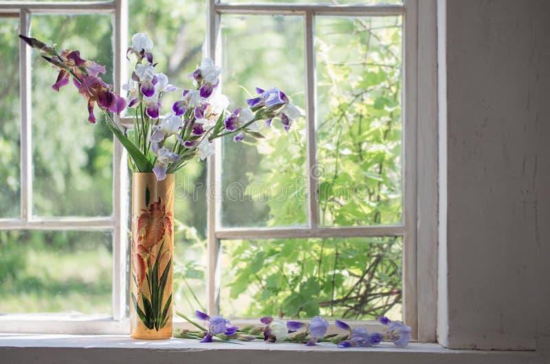 在花瓶的虹膜在窗台 库存图片