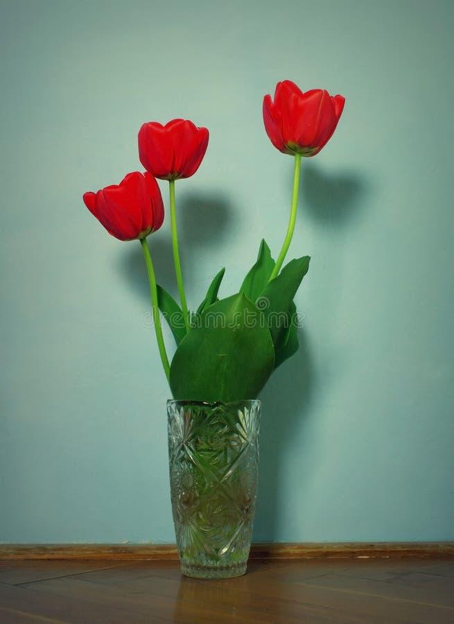 在花瓶的郁金香 免版税图库摄影