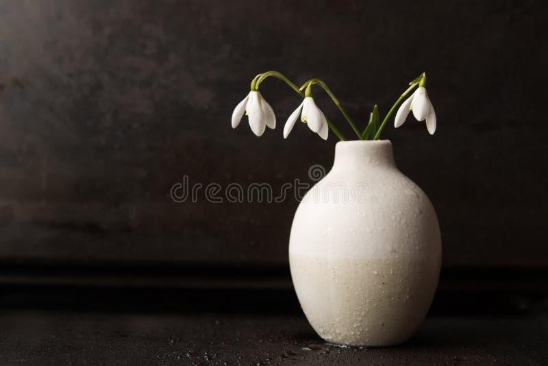 在花瓶的Snowdrops 库存照片
