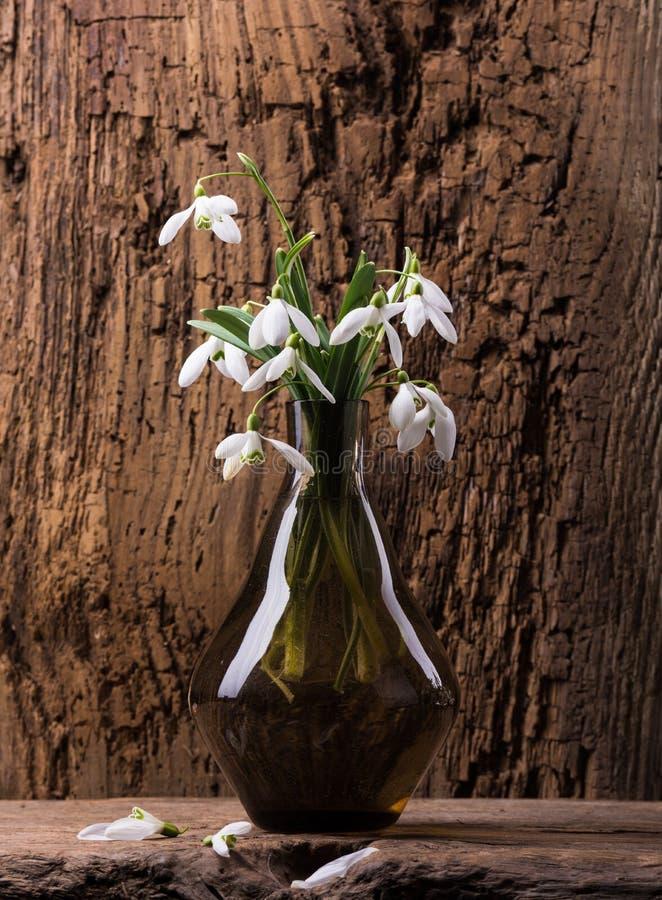 在花瓶的Snowdrops 免版税库存图片