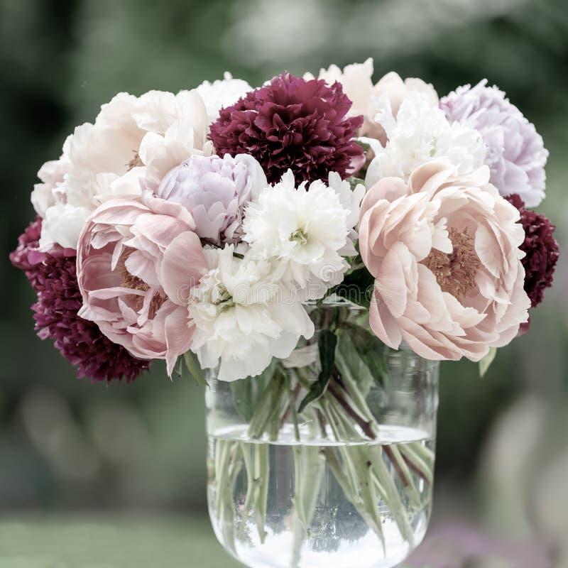 在花瓶,牡丹不同形式的牡丹成为不饱和对轻淡优美的色彩有被弄脏的背景 库存照片