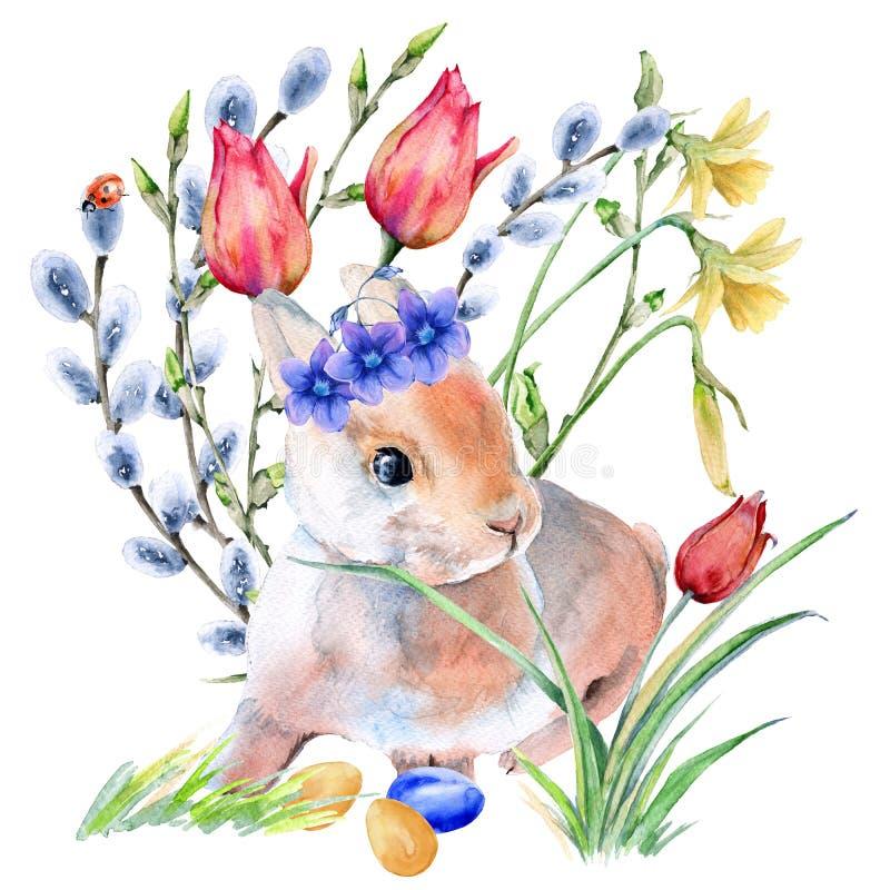 在花的复活节兔子用复活节彩蛋 背景查出的白色 皇族释放例证