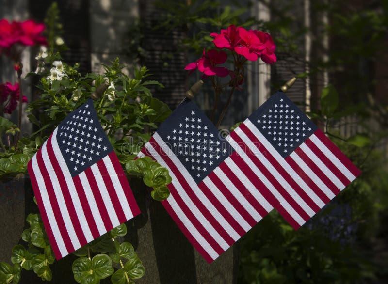 在花盆的三面小旗子 图库摄影
