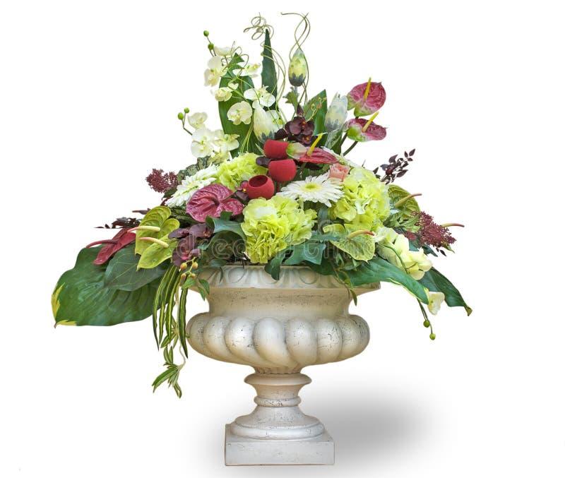 在花盆的花 免版税库存照片