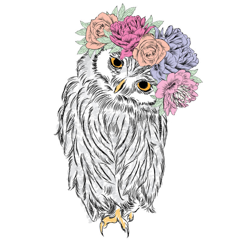 在花花圈的逗人喜爱的猫头鹰  库存例证