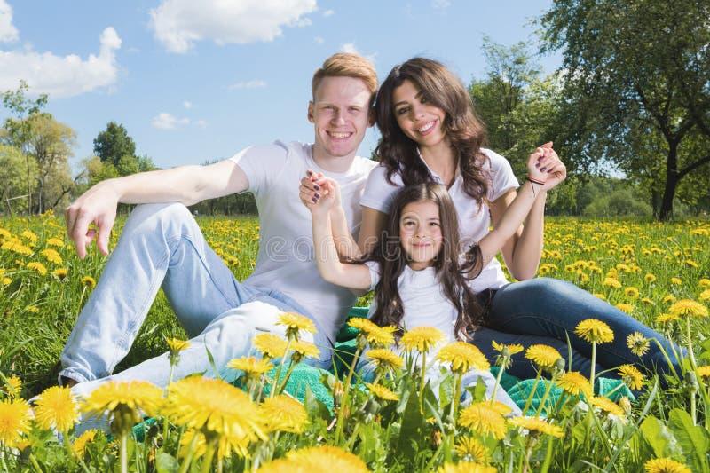 在花草甸的家庭 库存图片