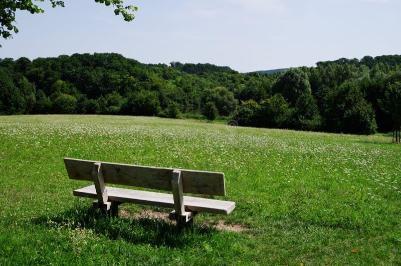 在花草甸边缘的长木凳 库存图片