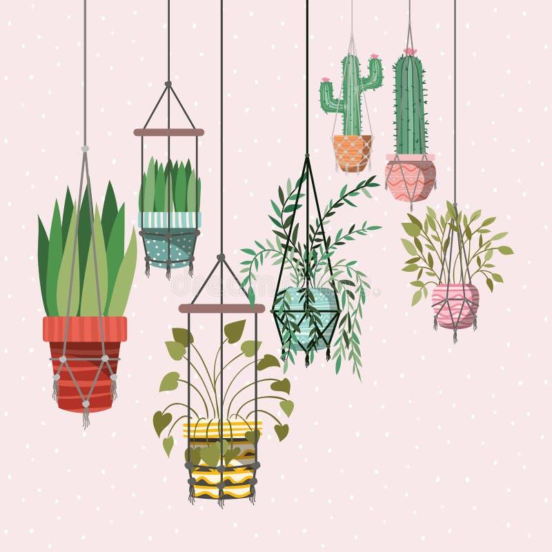 在花边挂衣架的室内植物 向量例证