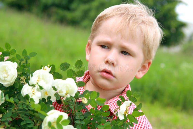 在花附近的不满意的孩子 库存照片