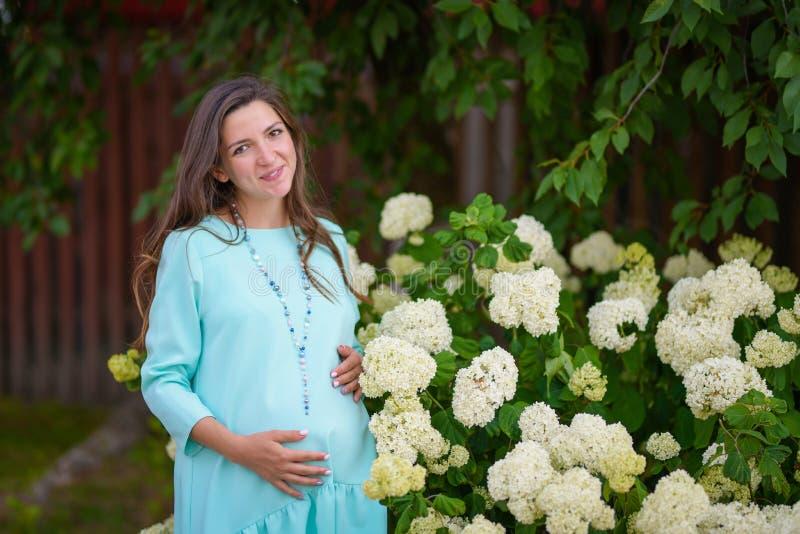 在花附近的怀孕的女孩 一件蓝色礼服的美丽的孕妇 怀孕的腹部用手 花的怀孕的愉快的女孩 图库摄影