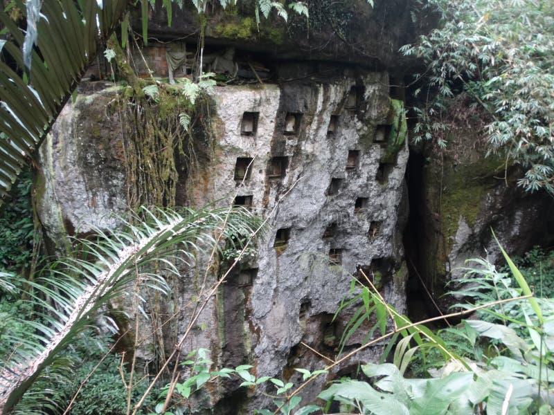 在苏拉威西岛晃动坟茔在塔娜Toraja地区 库存照片