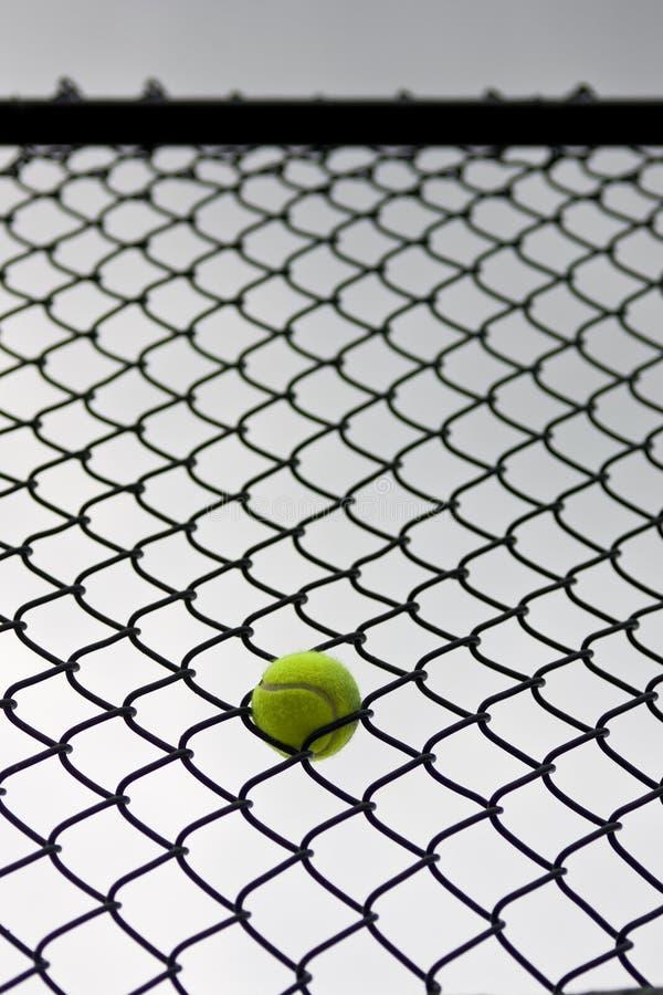 在范围困住的网球 免版税库存照片