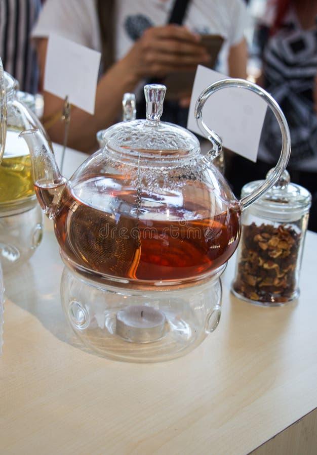 在茶壶的清凉茶和瓶的茶厂 免版税库存照片