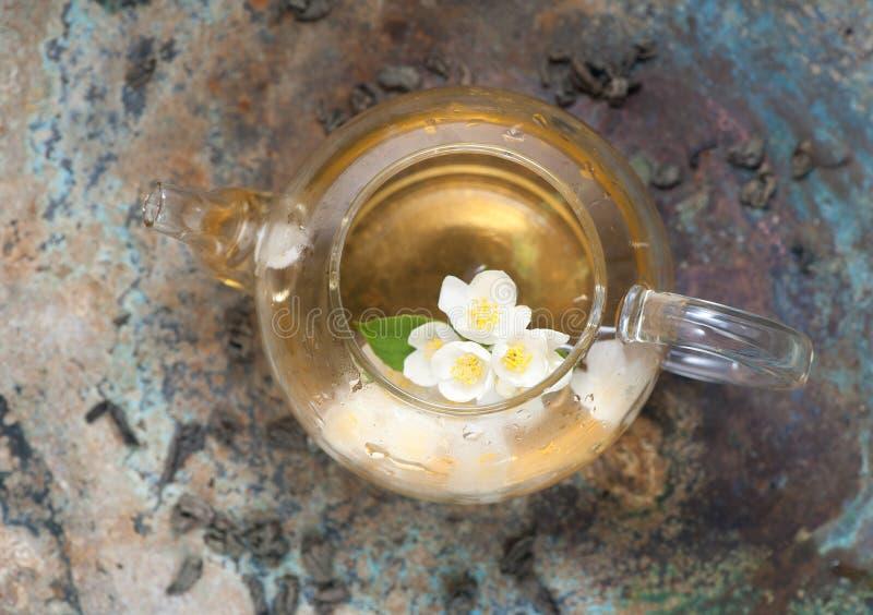 在茶壶的绿色茉莉花茶 顶视图 免版税库存照片
