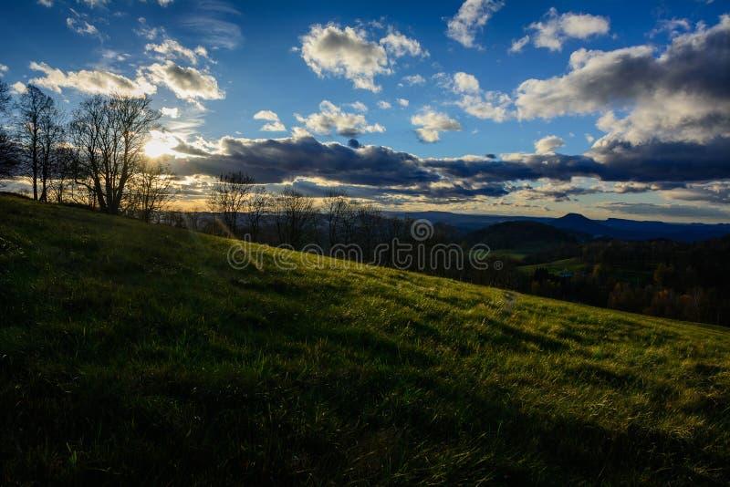 在草原的日落有树的 免版税库存照片
