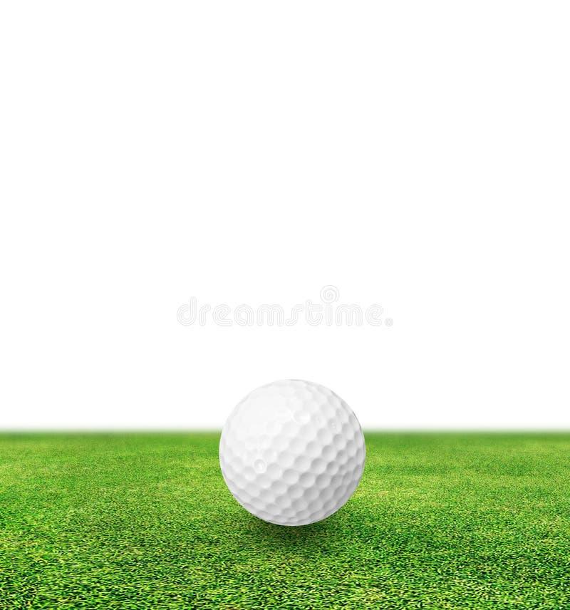 在草和白色背景的高尔夫球 免版税图库摄影