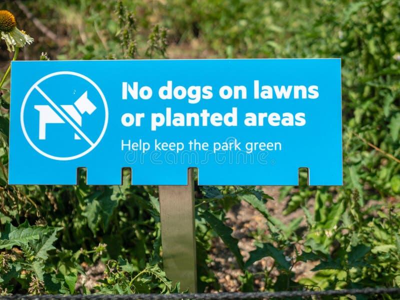 在草坪或被种植的区域的狗,不帮助保留公园绿色标志 库存照片
