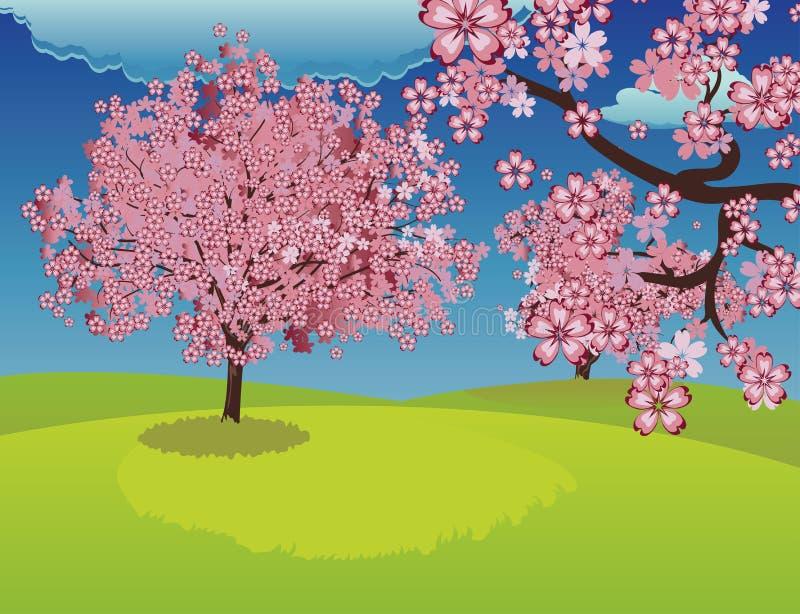 在草坪的开花的佐仓树 向量例证