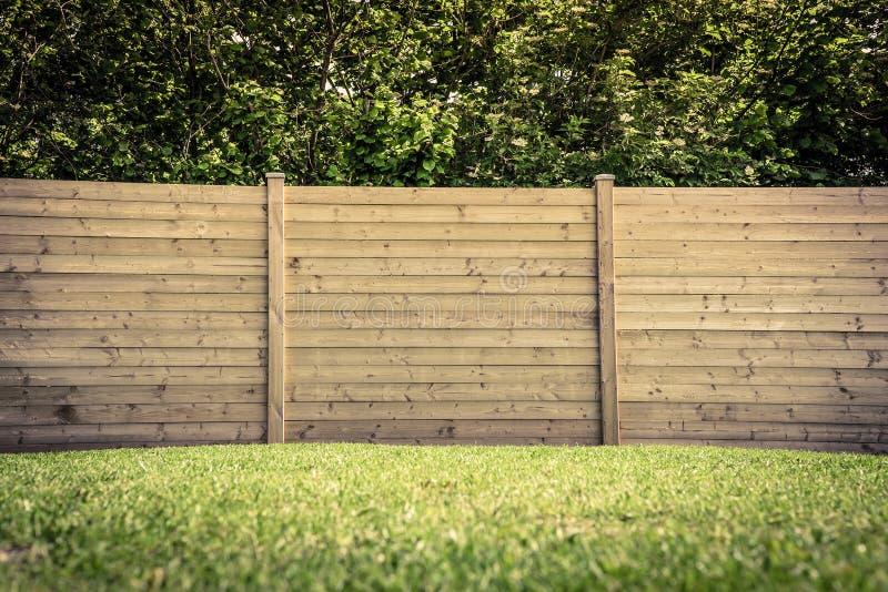 在草坪的篱芭 库存照片