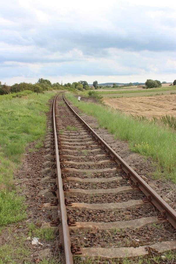 在草甸之间的生锈的铁路轨道 免版税库存照片