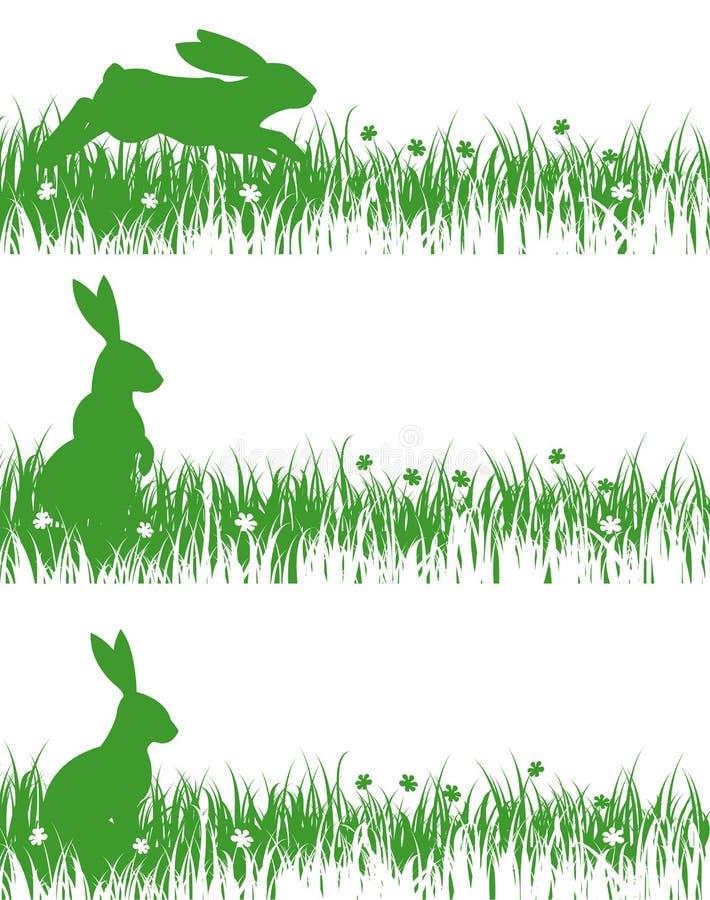 在草甸的兔子 向量例证
