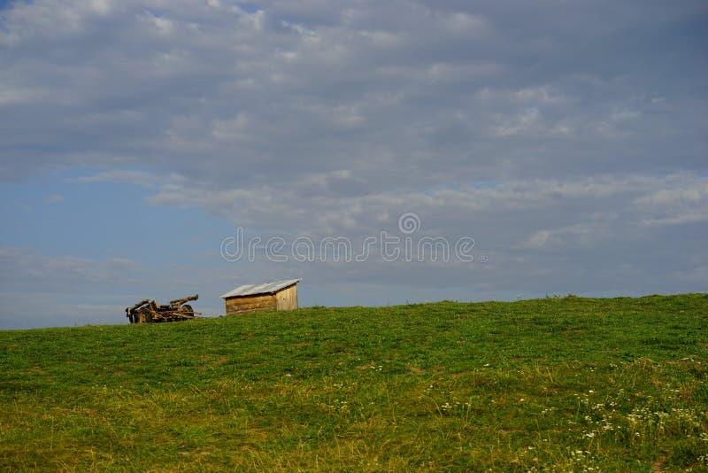 在草甸的用马拉的无盖货车 库存照片