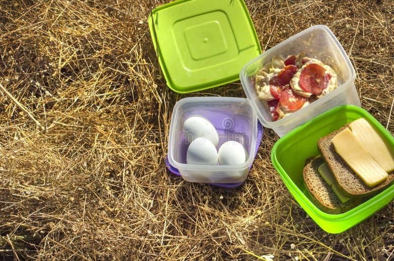 在草甸的野餐设置有拷贝空间的 免版税库存图片