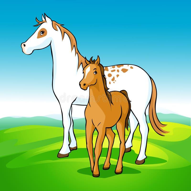 在草甸的马-母马和驹 皇族释放例证